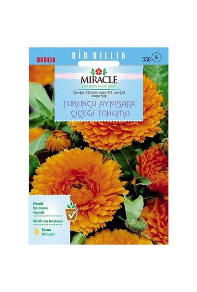 Miracle Tohum Turuncu Katmerli Aynı Safa Çiçeği Tohumu (300 Tohum)