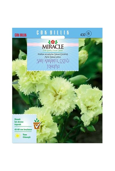 Miracle Tohum Marie Chabaud Sarı Karanfil Çiçeği Tohumu (190 Tohum)