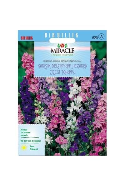 Miracle Tohum Hezaren Çiçeği (Delphinium) Süvari Mahmuzu Çiçeği (450 Tohum)