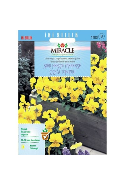 Miracle Tohum Sarı Hercai Dev Menekşe Çiçeği Tohumu (150 Tohum)