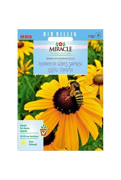 Miracle Tohum Hirto My Joy Rudbekya (Güneş Şapkası) Çiçeği Tohumu (900 Tohum)