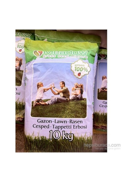 Plantistanbul 4M Golden Çim Tohumu 10Kg ( %30 Su Tasarruflu)