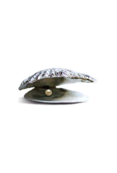 Vip İnci Zirkon Taşlı İstiridye İnci Kolye Exclusive Collection - Crown Design