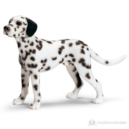 Schleich Dalmaçyalı Köpek Erkek Fiyatı Taksit Seçenekleri