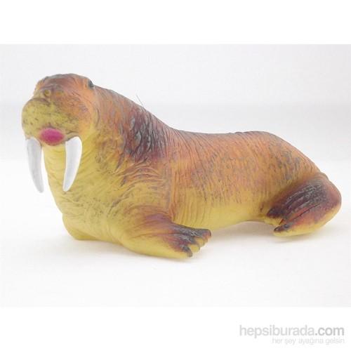 Kutup Hayvanlari Denizaslani