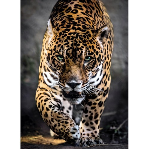 Clementoni 39326 - 1000 Parça Hqc Wildlife Puzzle