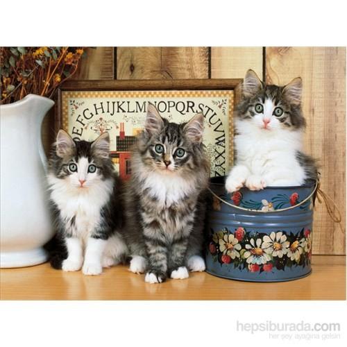 Clementoni 1500 Parça Puzzle Norwegian Cats