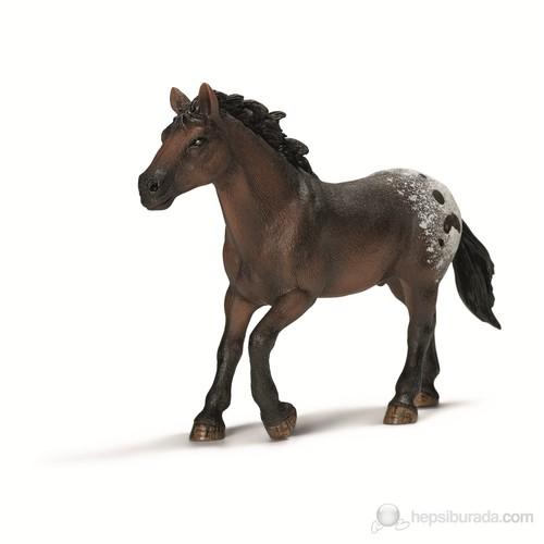 Schleich Apaplosa/ Leopar Atı Aygırı13732