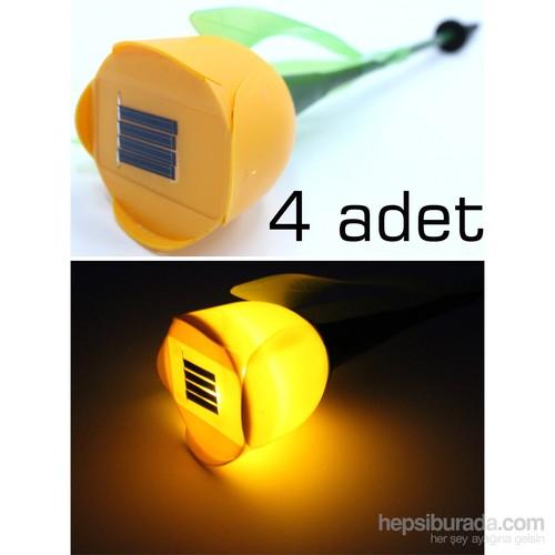 Concept 4 Adet Lale Güneş Enerjili Bahçe Lambası 090831