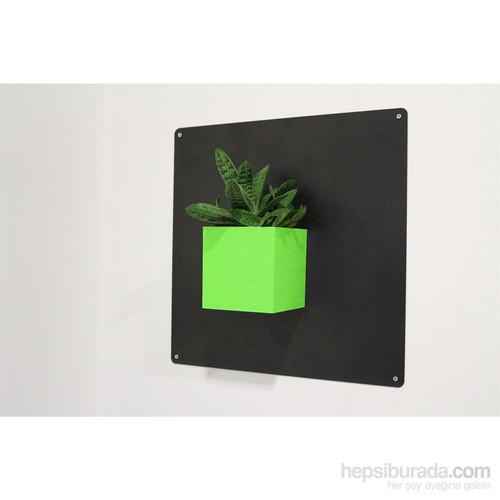 Greenmall Cubo Küp Manyetik Saksı - Mıknatıslı Plastik Saksı Açık Yeşil