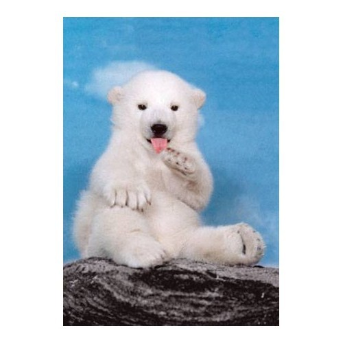 Clementoni Puzzle Polar Bear (500 Parça)