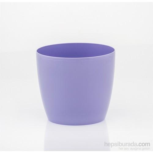 Teraplast Madeıra Luxy (Lilyum) 3 Plastik Saksı