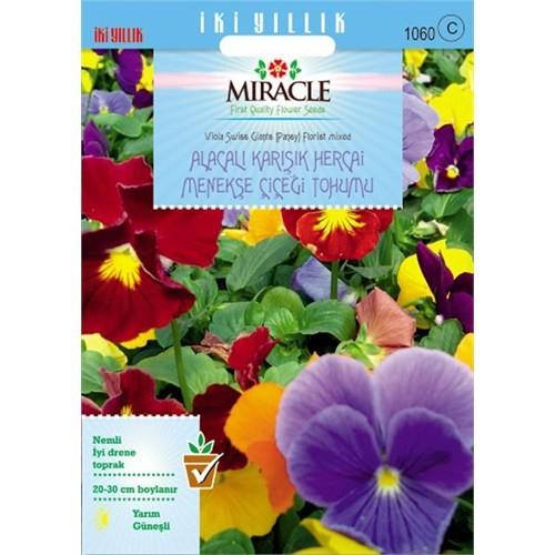Miracle Tohum Swiss Giant Alacalı Karışık Hercai Menekşe Çiçeği (300 Tohum)