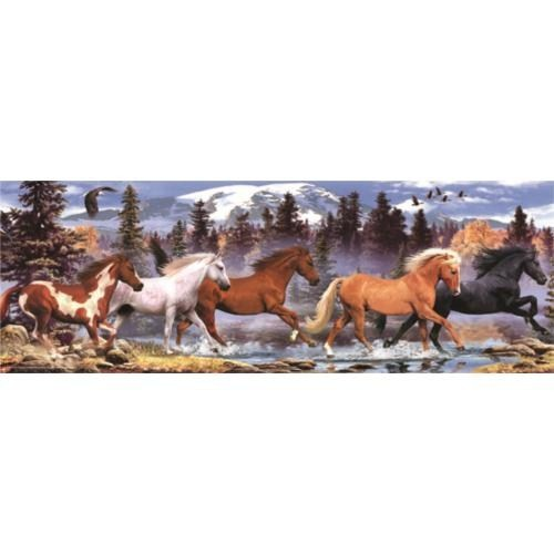 Anatolian Koşan Atlar / Runnıng Horse