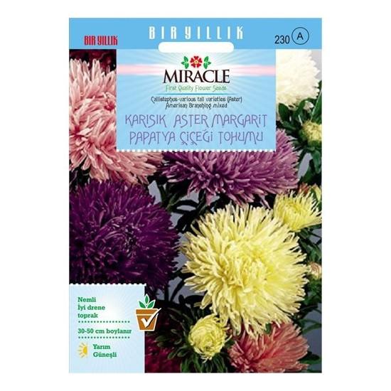 Miracle Tohum Karışık Renkli Amerikan Branching Aster Margarit Papatya Çiçeği Tohumu (360 Tohum)