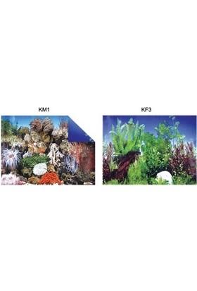 Kw Zone Pls.poster 48 cm 15 mt