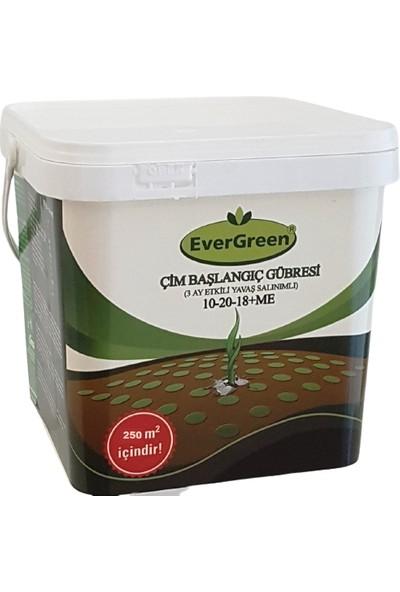 Evergreen - Çim Başlangıç Gübresi 5 kg Kova