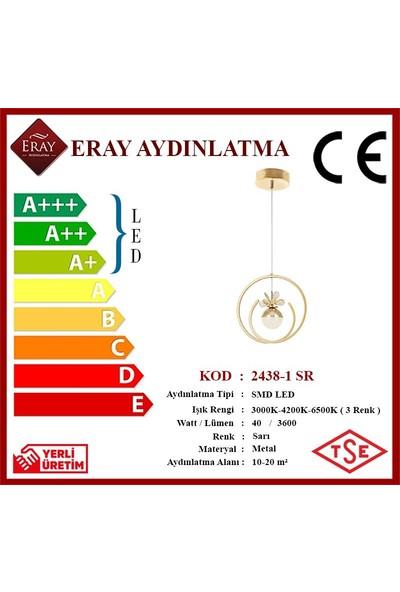 Eray Aydınlatma 2438-1 Sarı LED Avize