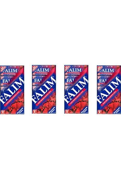 Falım Multipack Çilek Aromalı 7 gr 5'li Sakız 20 Adet