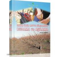 Hasad Ilıman Iklim Meyve Ağaçlarında Budama ve Aşılama Kitabı