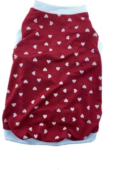 Sempaty Little Heart Kedi Köpek Kıyafeti Kırmızı - Beyaz M