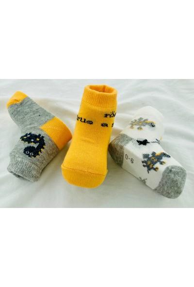 Semoor Çorap ve Tekstil Röar Bebek Çorabı (Yeni Sezon) 1842-12 (3ADET)