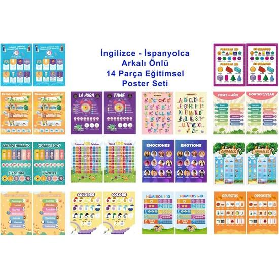 Üze İngilizce-İspanyolca Arkalı Önlü 14 Eğitici Poster 7 - 12 Yaş