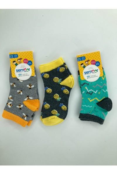 Semoor Çorap ve Tekstil Arı Ananas Desen Soket Çorap 2052-12 (3 Adet)