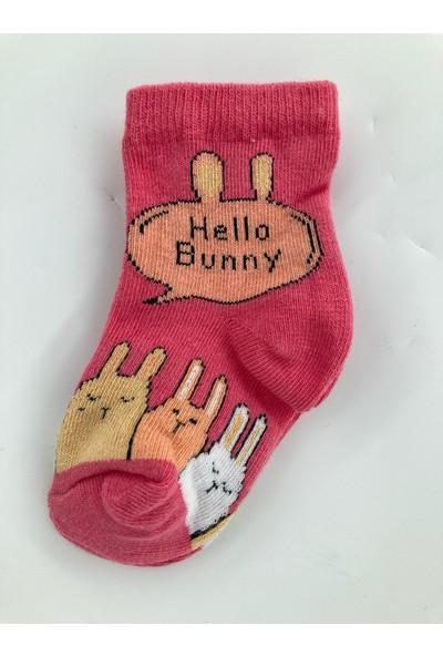 Semoor Çorap ve Tekstil Hello Bunny Desen Unisex Çorap 3060-12 (3 Adet)