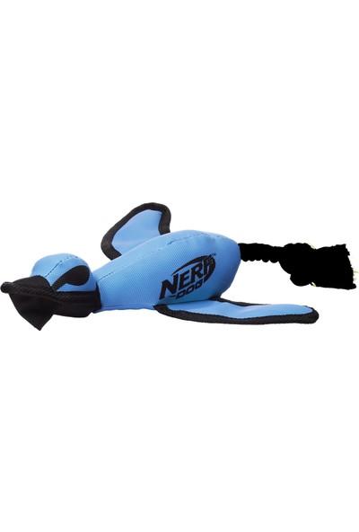 Nerf Büyük Fırlat ve Yakala Köpek Oyuncağı (Yurt Dışından)