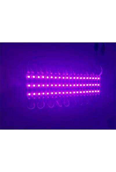 Ice JS-IP65 3led 5054 Pempe Modül LED