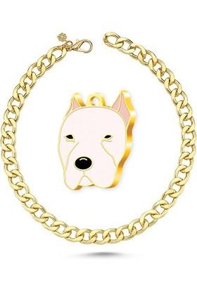 The Passage Altın Kaplama Dogo Argentino Köpek Künyesi+Gold Kolye