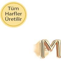 Engingold 14 Ayar Altın M Harfli Küpe