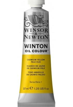 Winsor & Newton Wınsor Newton Winton Yağlı Boya 37 ml 119 Kadmiyum Sarı Soğuk Ton 8