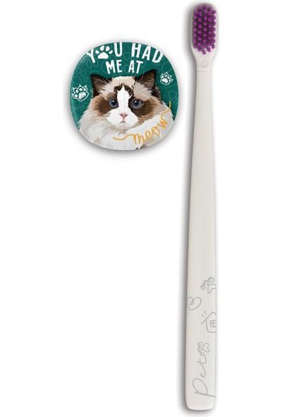 Flipper Pets Hijyenik Saklama Kabı ve Yetişkin Diş Fırçası Seti-Ragdoll Kedi