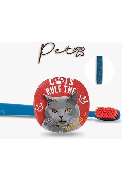 Flipper Pets Hijyenik Saklama Kabı ve Yetişkin Diş Fırçası Seti-British Kedi