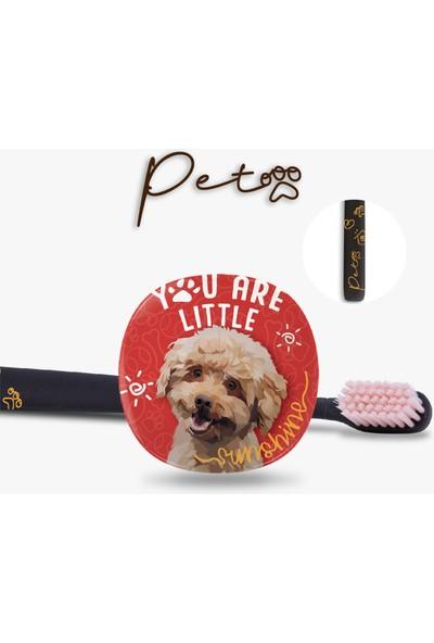 Flipper Pets Hijyenik Saklama Kabı ve Yetişkin Diş Fırçası Seti-Poodle Köpek