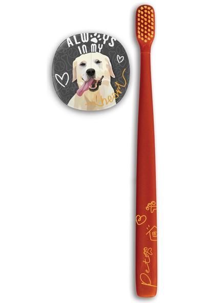 Flipper Pets Hijyenik Saklama Kabı ve Yetişkin Diş Fırçası Seti-Labrador Köpek