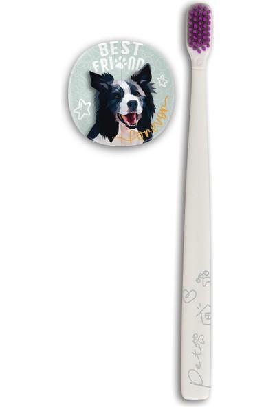 Flipper Pets Hijyenik Saklama Kabı ve Yetişkin Diş Fırçası Seti-Border Collie Köpek