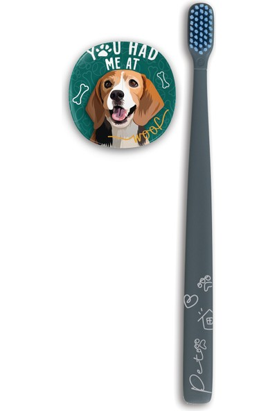 Flipper Pets Hijyenik Saklama Kabı ve Yetişkin Diş Fırçası Seti-Beagle Köpek
