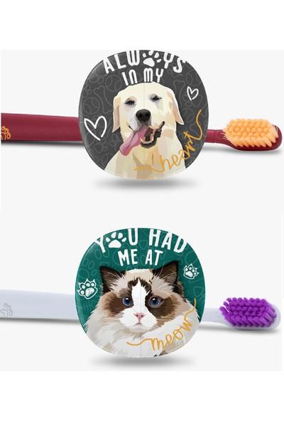 Flipper Pets Hijyenik Saklama Kabı ve Yetişkin Diş Fırçası Seti-2'li Set-Labrador-Ragdoll