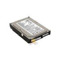 Seagate 160GB 7200RPM 2MB Pata Sabit Disk ST3160215A