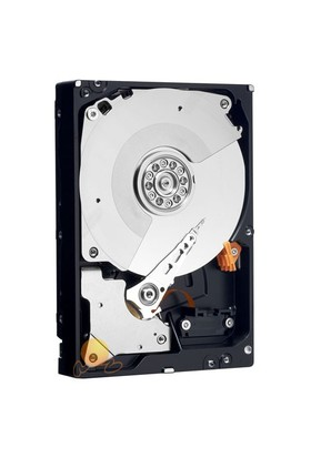 Western Digital 320GB 7200RPM 8MB SATA2 Sabit Disk WD3200AAJS