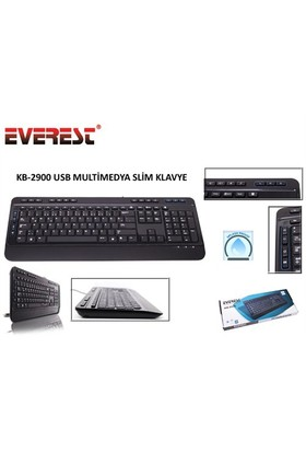 Everest KB-2900 Siyah USB Multi media Q Klavye