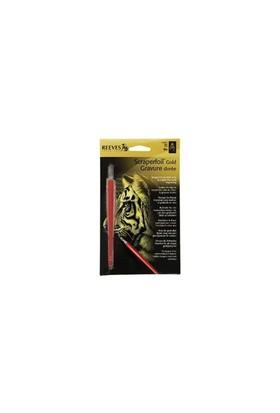 Reeves Altın Gravür Kazıma Seti - Kaplan - 180X110mm