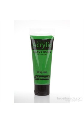 Bigpoint Akrilik Boya 75 Ml Sap Green 568