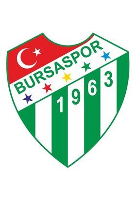 Sticker Masters Bursaspor Sticker