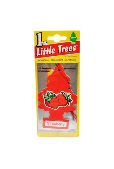Little Trees Strawberry Araba Kokusu