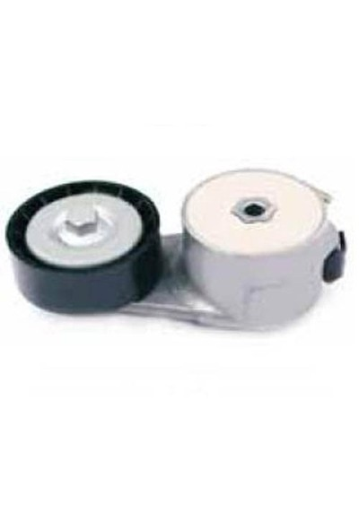 Dayco Apv1079 V.Kay.Gergı Rulmanı Idea-Panda-Punto-Stl 1,1-1,2-1,416