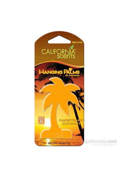 California Hanging Palms HİNDİSTAN CEVİZİ